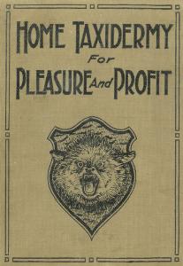 home taxidermy for pleasure & profit