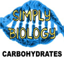 Carbohydrates | Documents and Forms | Templates