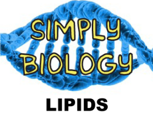 Lipids | Documents and Forms | Templates