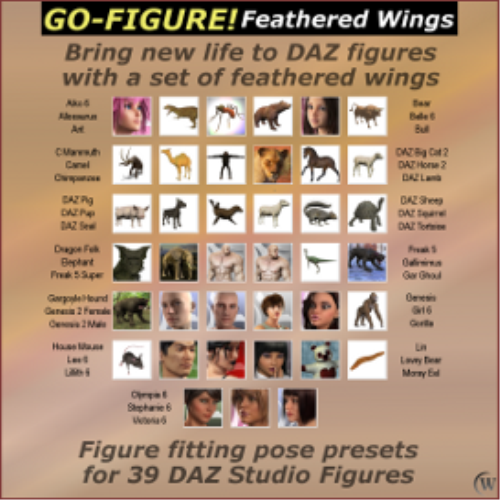 First Additional product image for - Go-Figure! for Feathered Wings