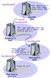 Your Web Site Parts - What They Are, What You Need | eBooks | Internet