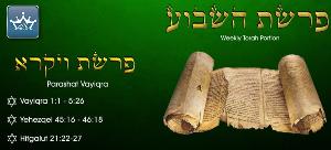 vayikra-mar-21-2015