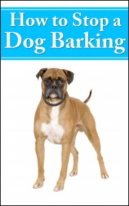 how to stop dog barking