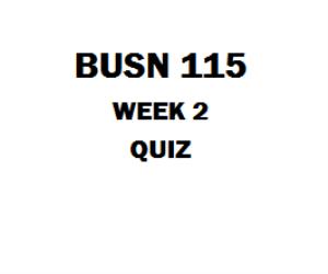 BUSN 115 Week 2 Quiz | eBooks | Education