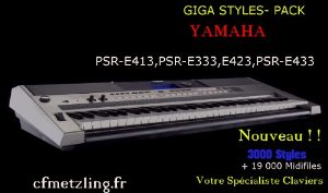Styles PSR E | Music | International