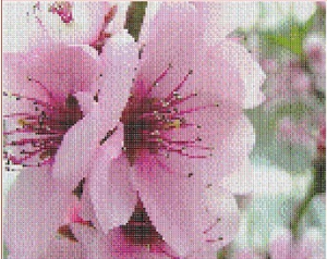 V ruzove (In pink color) | Crafting | Cross-Stitch | Other