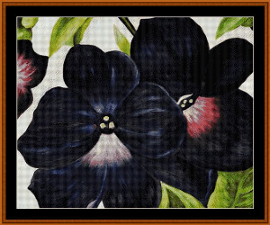 black and purple petunias - o'keeffe cross stitch pattern by cross stitch collectibles