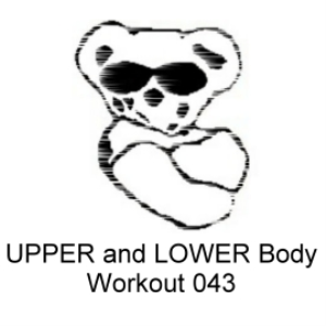 UPPER and LOWER BODY Workout 043 | Other Files | Everything Else
