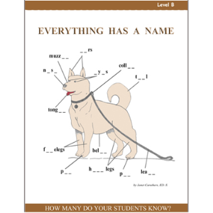 Everything Has A Name - Level B Activity Pack - Grade 2 | eBooks | Education