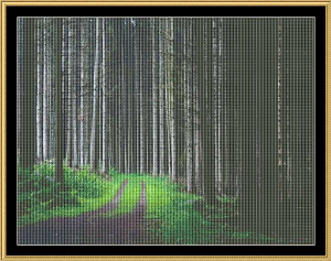 Into The Woods | Crafting | Cross-Stitch | Other