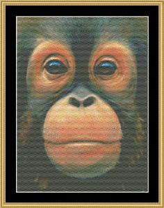 The Many Faces - Baby Orangutan | Crafting | Cross-Stitch | Animals