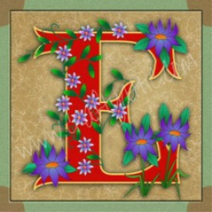 illuminated letter e embroiderers background