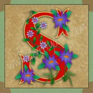 Illuminated Letter S embroiderers background | Crafting | Embroidery