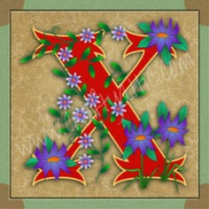 Illuminated Letter X embroiderers background | Crafting | Embroidery