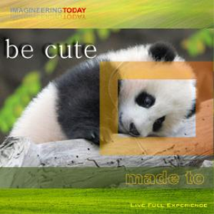 Made To Be Cute | Software | Other