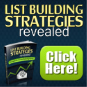 ebook about list building strategies
