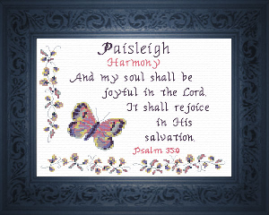 Name Blessings -  Paisleigh | Crafting | Cross-Stitch | Other