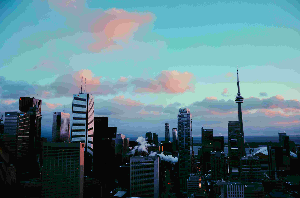 beautiful toronto skyline