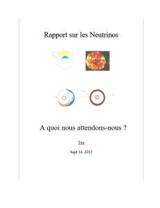 Neutrino Report French Version | eBooks | Science