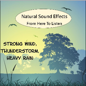 Sound Effects Vol.1 Wind, Thunder, Rain | Music | Ambient