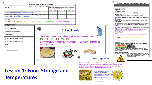 l1 food storage and temperatures solo lesson pack