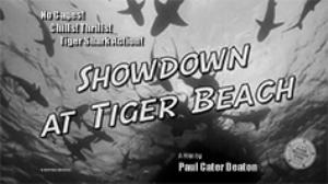 showdown at tiger beach