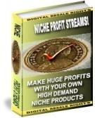 Niche Profit Streams With Master Resale Rights | eBooks | Business and Money