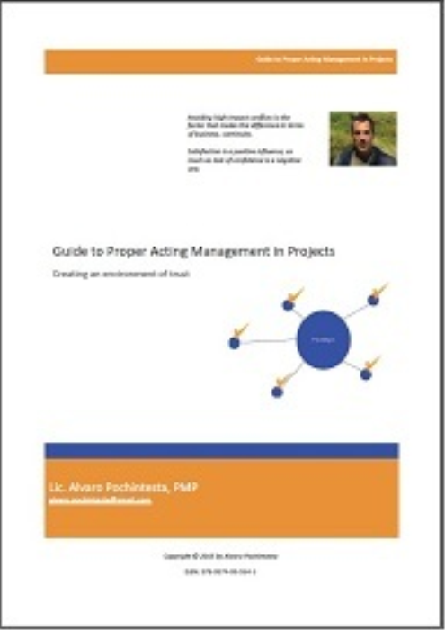 Second Additional product image for - Guide to Proper Acting Management in Projects