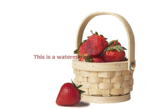strawberry basket photo
