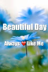 beautiful day always love like me