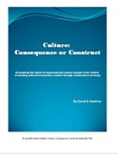 culture: consequence or construct