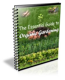 The Essential Guide to Organing Gardening | eBooks | Home and Garden