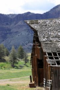 Old Oregon Barn | Photos and Images | Travel