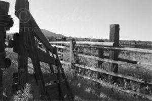 Old Corral | Photos and Images | Miscellaneous