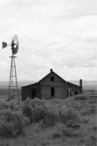 old homestead and windmill
