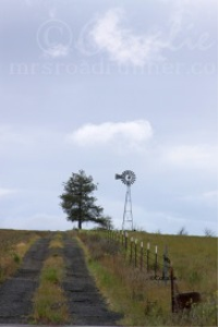oregon backroad windmill
