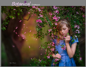 botanical overlays