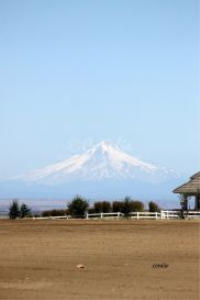 Views From A Central Oregon Vista | Photos and Images | Travel