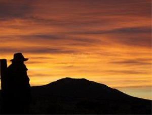 Cowboy Morning | Photos and Images | Nature