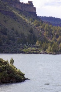 Lake View With The Petroglyph Rock | Photos and Images | Nature