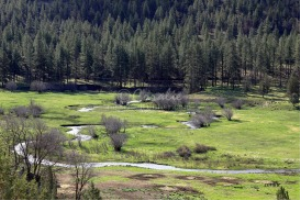 Crooked River Oregon   Photos and Images   Travel