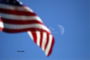 The Moon and The American Flag | Photos and Images | General