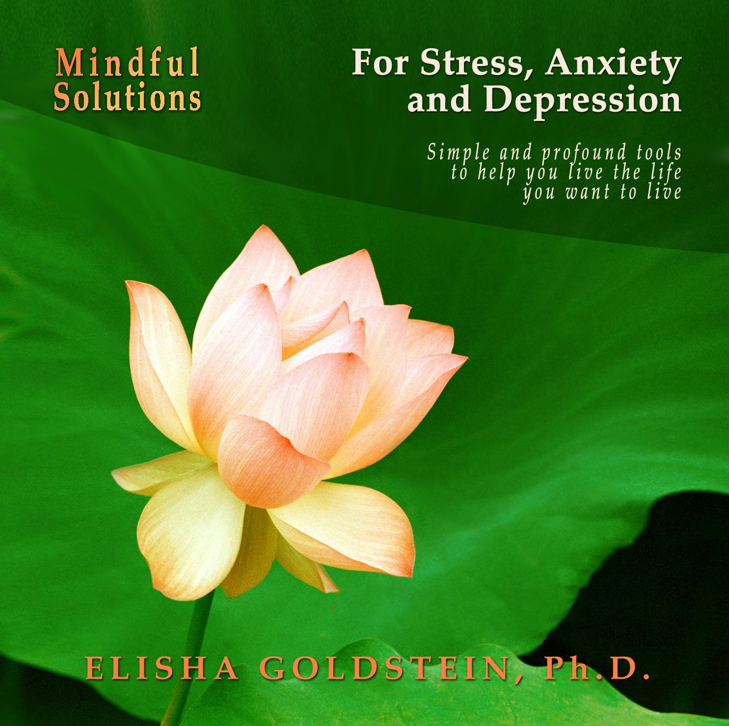 self help books relationship anxiety and depression