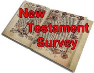 New Testament Survey | eBooks | Education