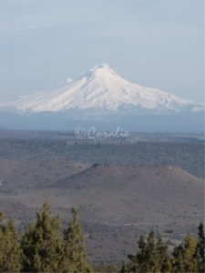 Mt. Hood and Flat Top Mesa | Photos and Images | Travel