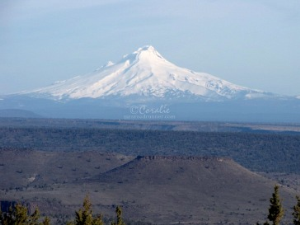 Mt. Hood and Flat Top Mesa 2 | Photos and Images | Travel