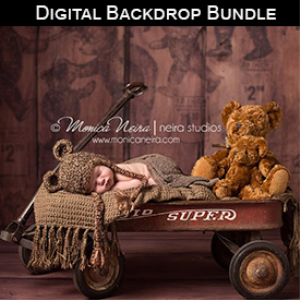 Digital Backdrop Bundle - Store | Software | Design Templates