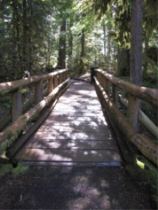 Foot Bridge Cascade Mountains | Photos and Images | Travel
