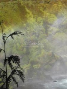 Sahalie Falls Oregon Series 10 | Photos and Images | Travel