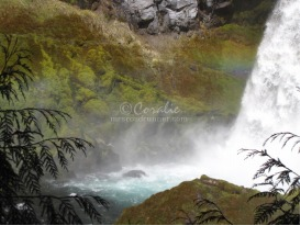 Sahalie Falls Oregon Series 18 | Photos and Images | Travel